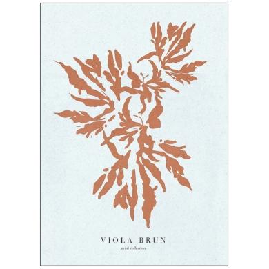 Poster & Frame   Coral burnt sienna - Bolighuset Werenberg