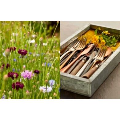 New Mags | Bog -  Spiselige blomster - Bolighuset Werenberg