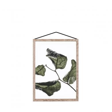 Moebe | Floating Leaves - Nr 03