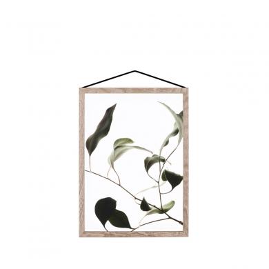 Moebe | Floating Leaves - Nr 09